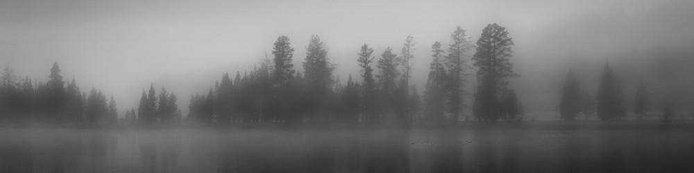 Fine Art Print | Panoramic Landscape Ducks on Pond