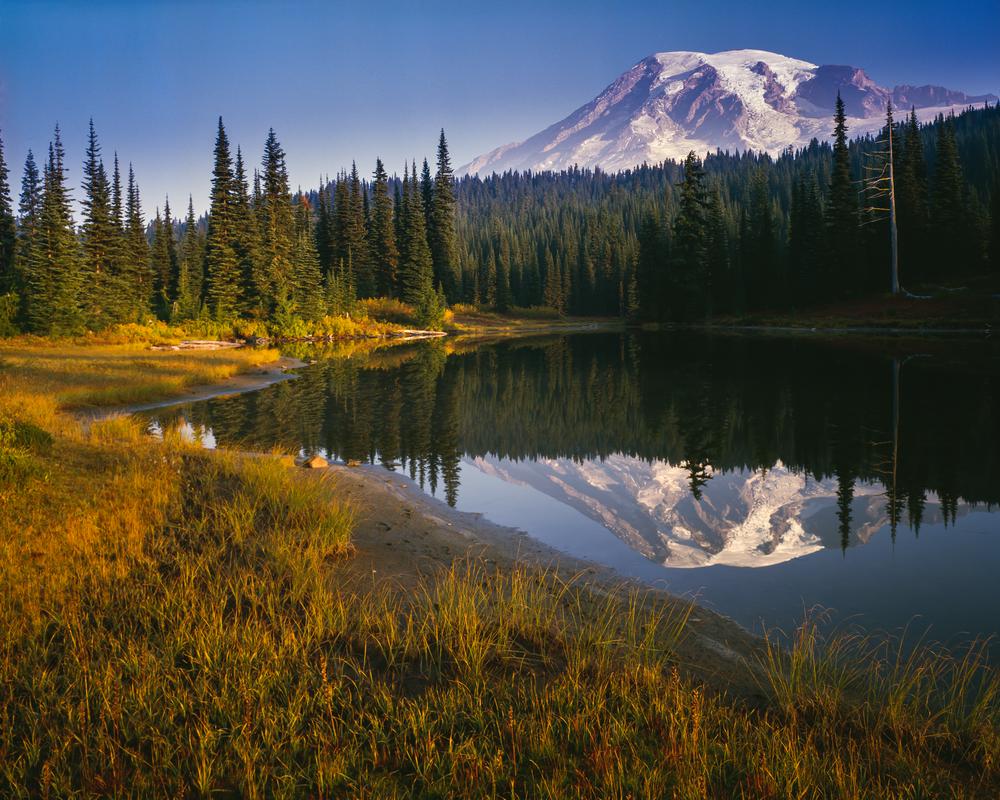 Fine Art Print | Mt Rainier Morning Light