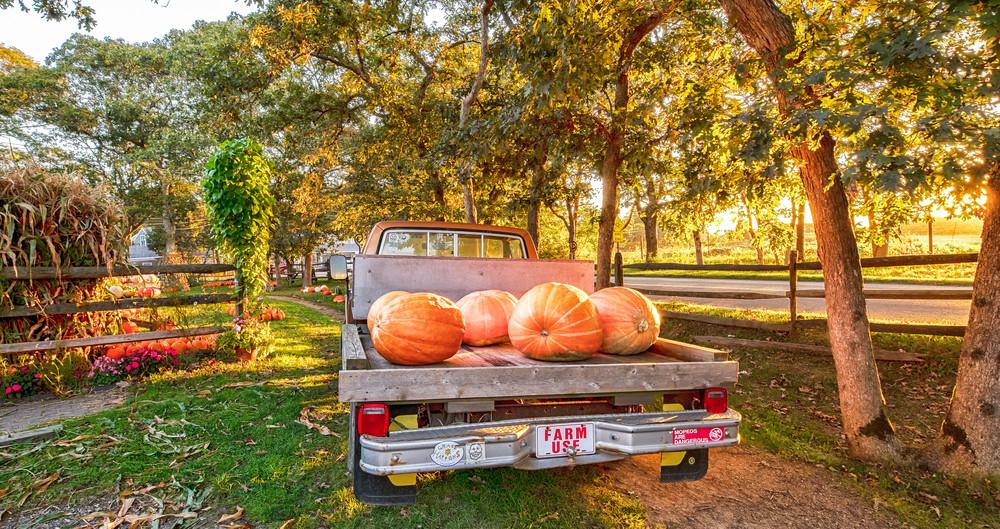 Morning Glory Fall Farm Art | Michael Blanchard Inspirational Photography - Crossroads Gallery