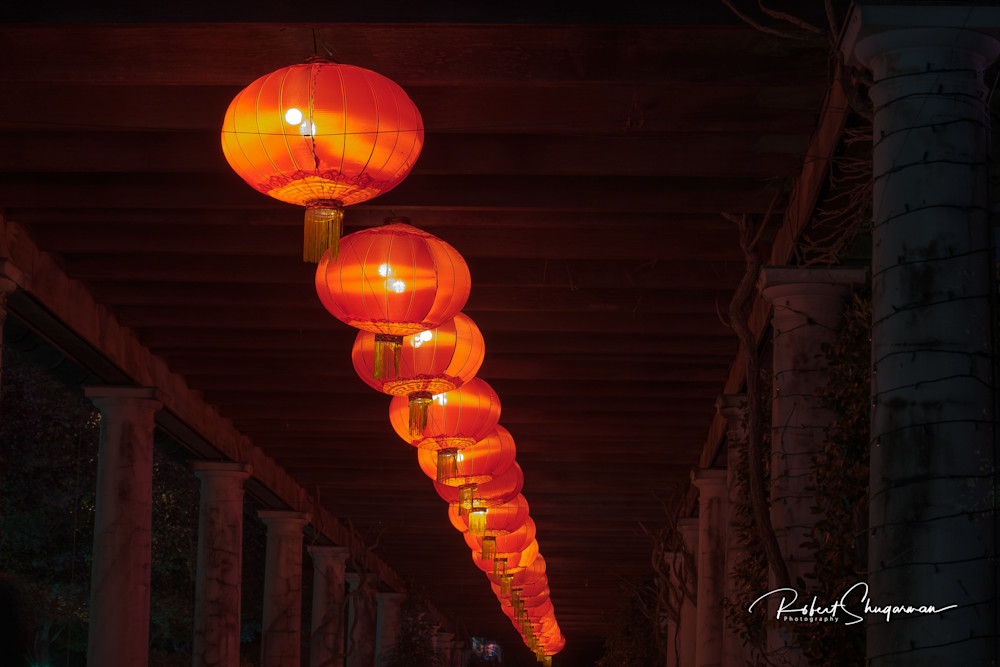 Chinese Lanterns | Shop Prints | Robert Shugarman Photography