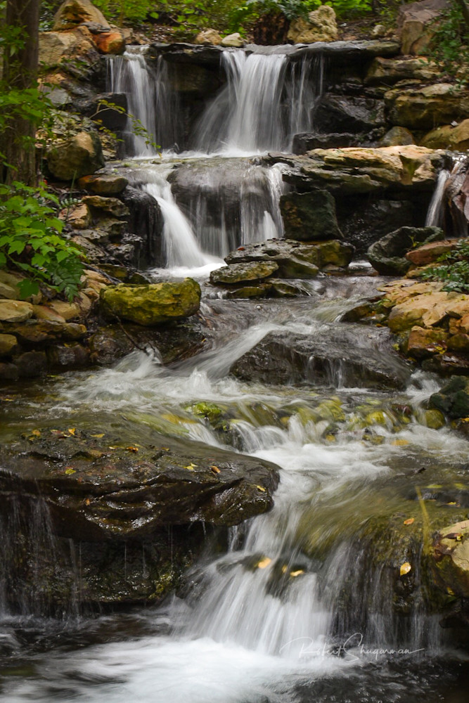 Waterfall Garden | Shop Prints | Robert Shugarman Photography