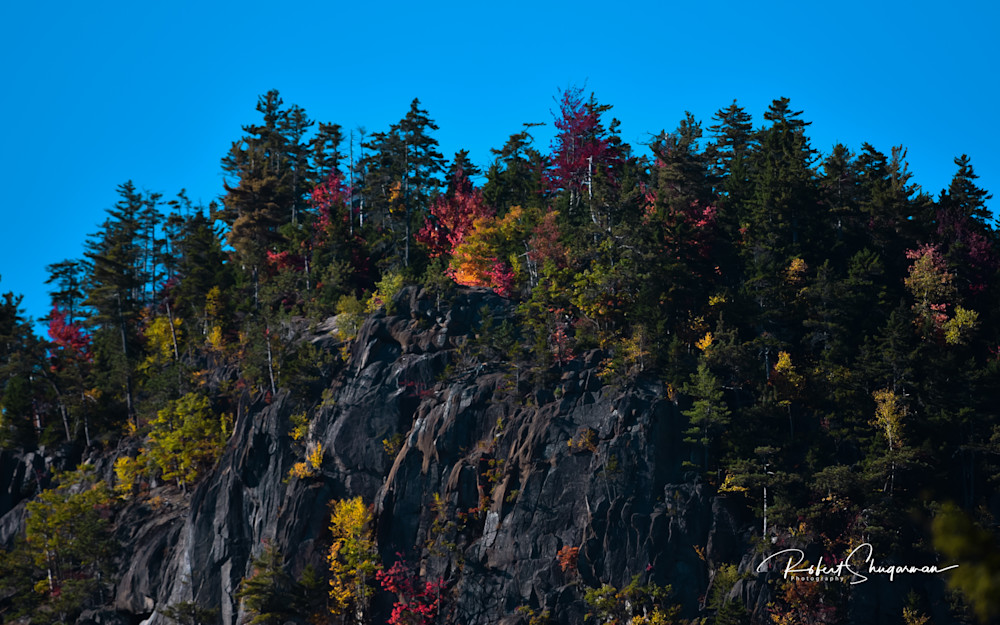 Autumn On White Mountain | Shop Prints | Robert Shugarman Photography