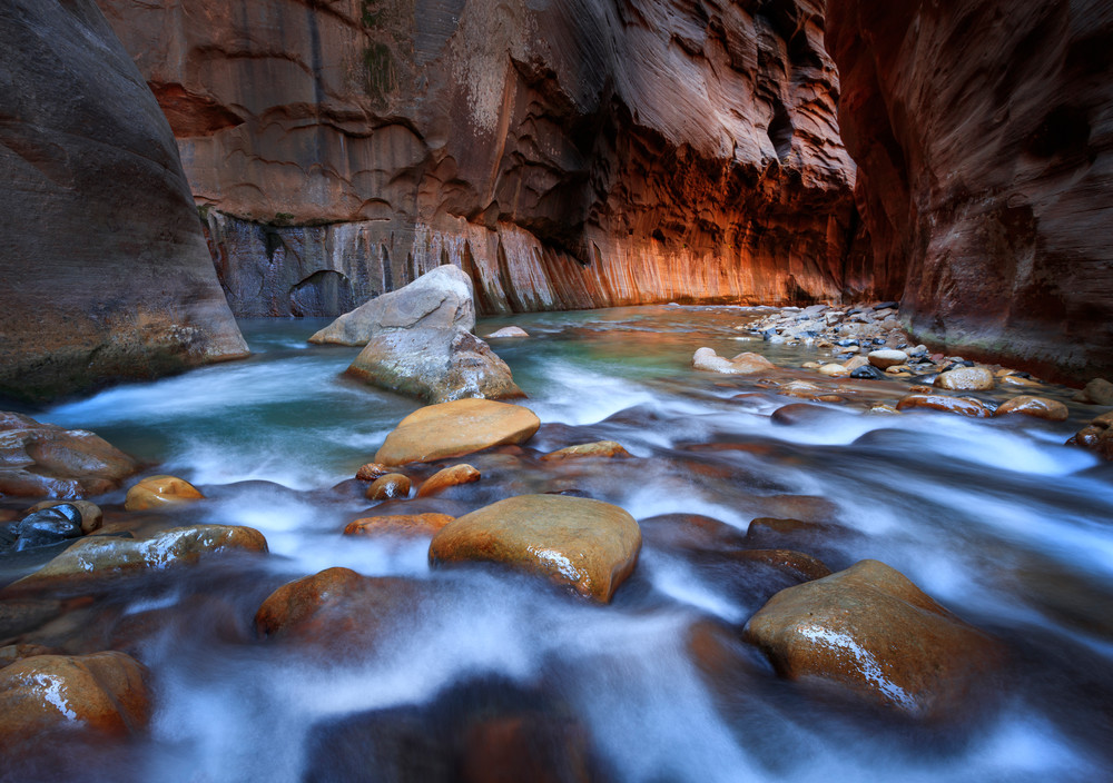 golden glow in the zion narrows
