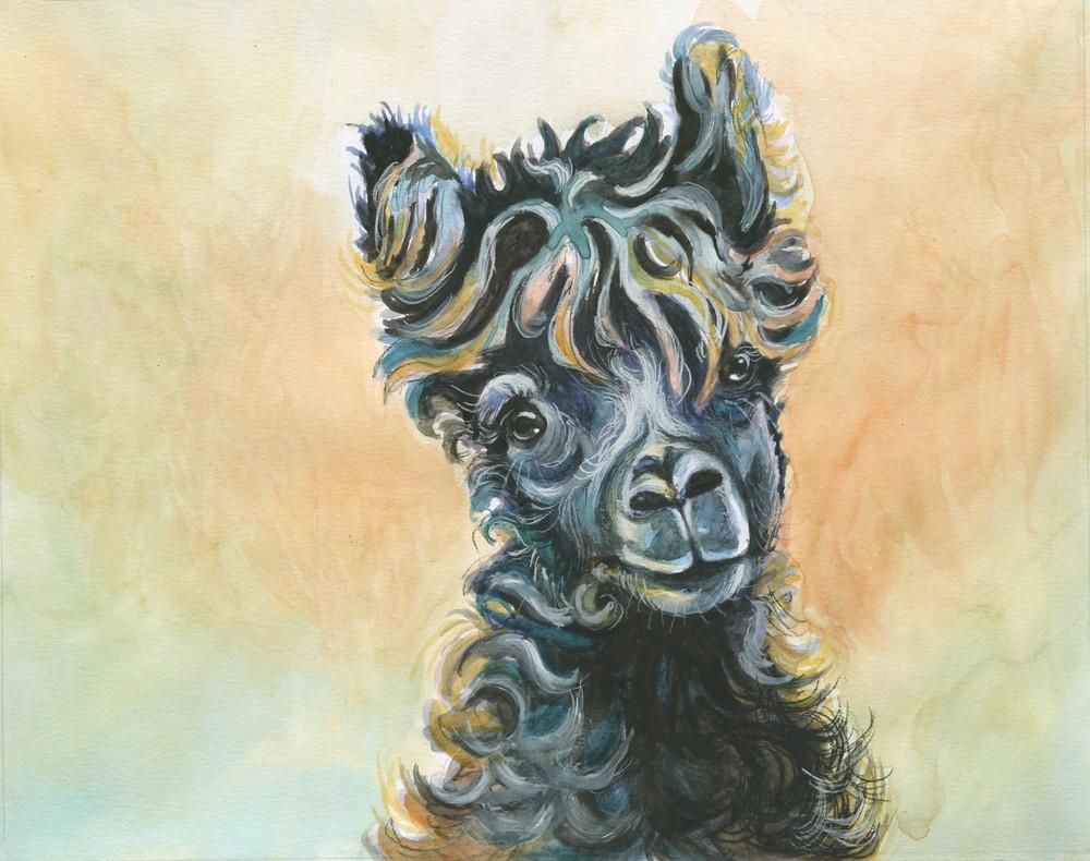 Hello Alpaca
