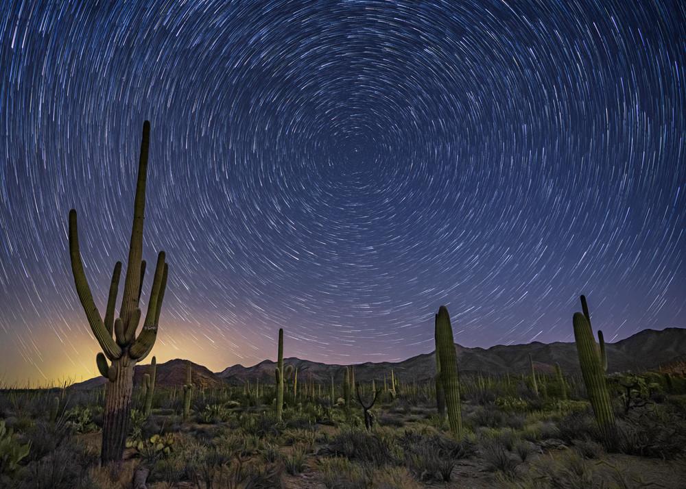Starry Skies Over Tucson Mountain Park Photography Art   Carol Brooks Parker Fine Art Photography