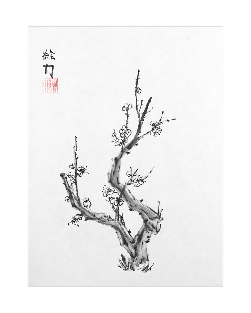 sumi-e, blossom, plum blossom two, black, ink