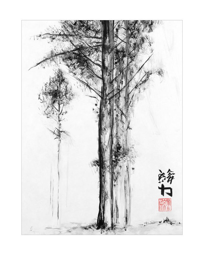 sumi-e, black, ink, pinetree, five
