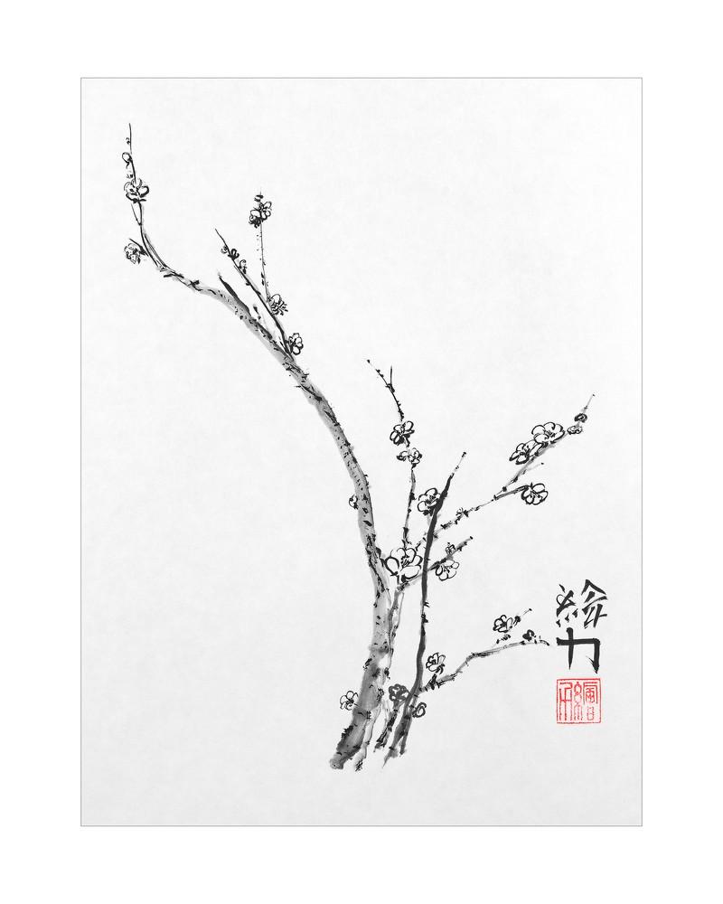 sumi-e, blossom, plum blossom four, black, ink