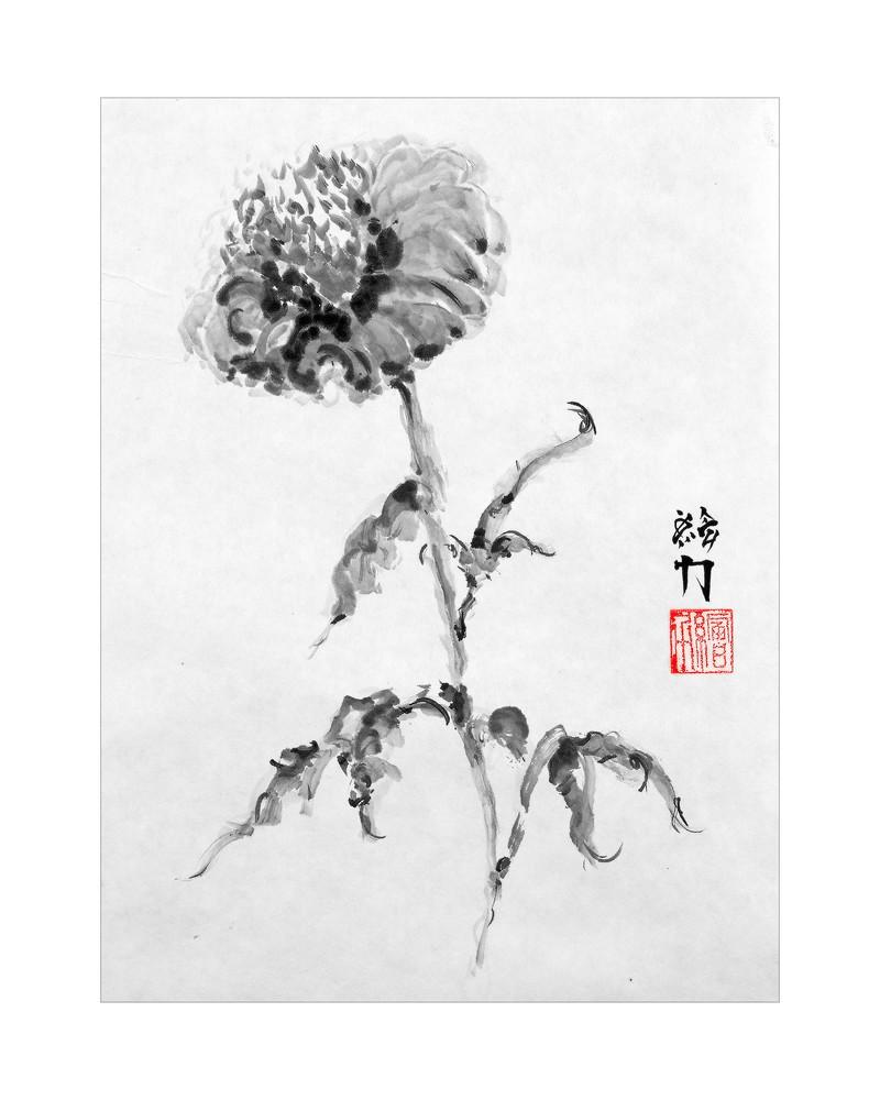sumi-e, flower, sunflower, black, ink