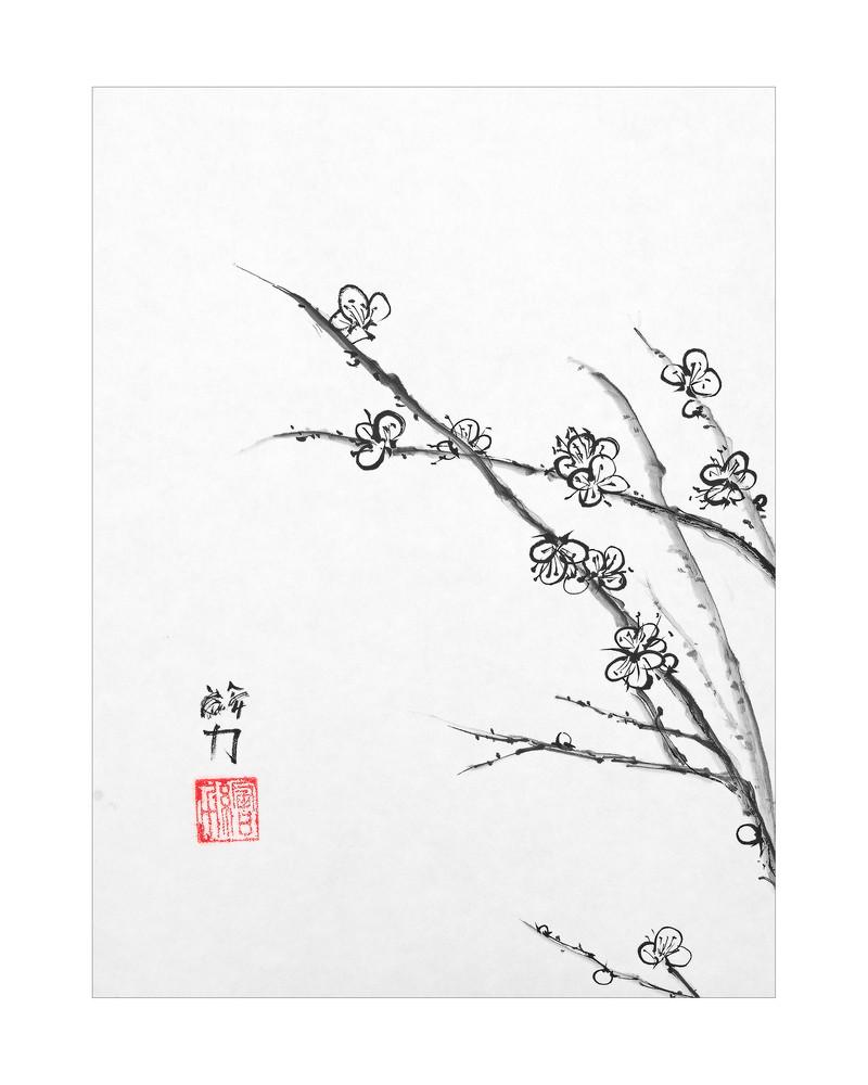 sumi-e, blossom, plum blossom three, black, ink