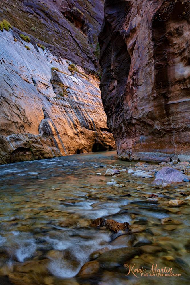 Zion Narrows Wall Glow Photograph 2811 | Zion Narrows | Zion National Park | Canyon Photography | Koral Martin Fine Art Photography
