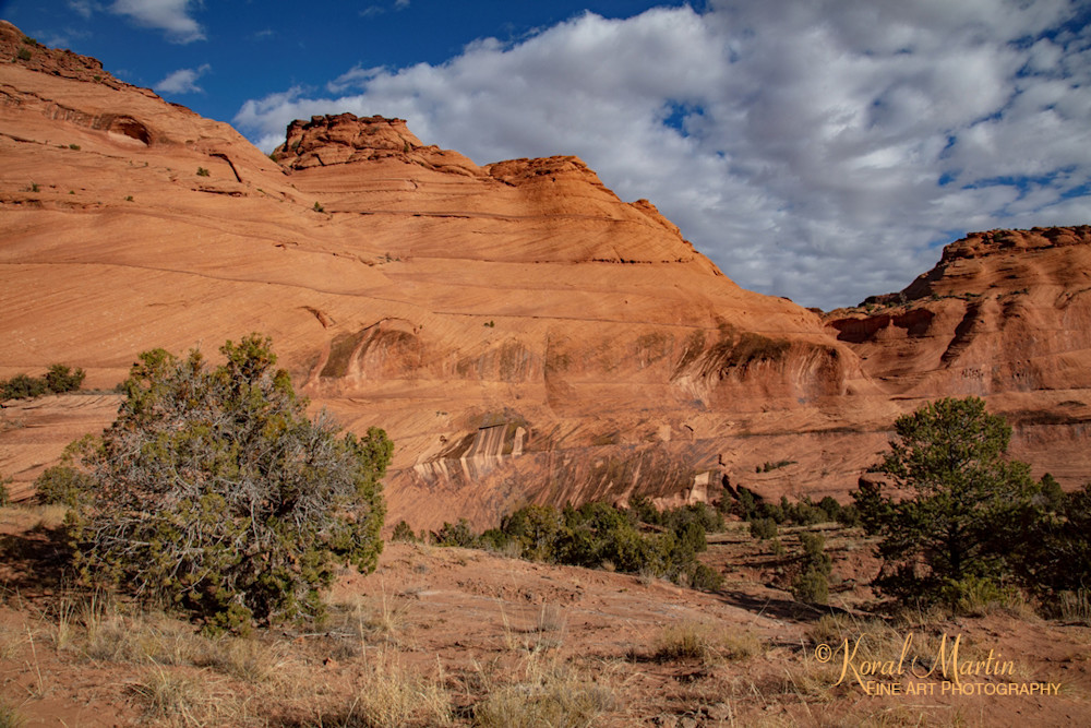 Canyon De Chelly View 3584 U 19   Art | Koral Martin Fine Art Photography
