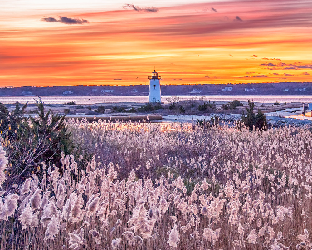 Edgartown Light Reeds Art | Michael Blanchard Inspirational Photography - Crossroads Gallery