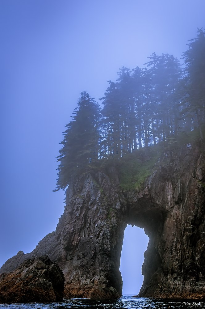 Coastal Fog, Alaska, 2013. Photography Art   Tom Stahl Photography