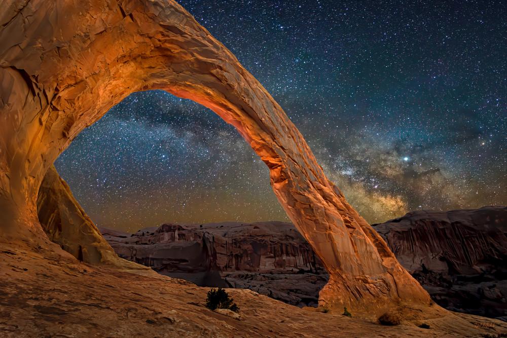 Elegance Corona Arch