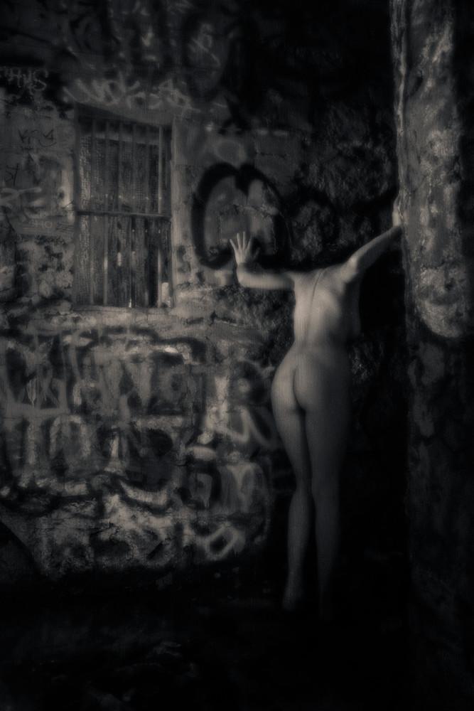 Captive Photography Art | Dan Katz, Inc.
