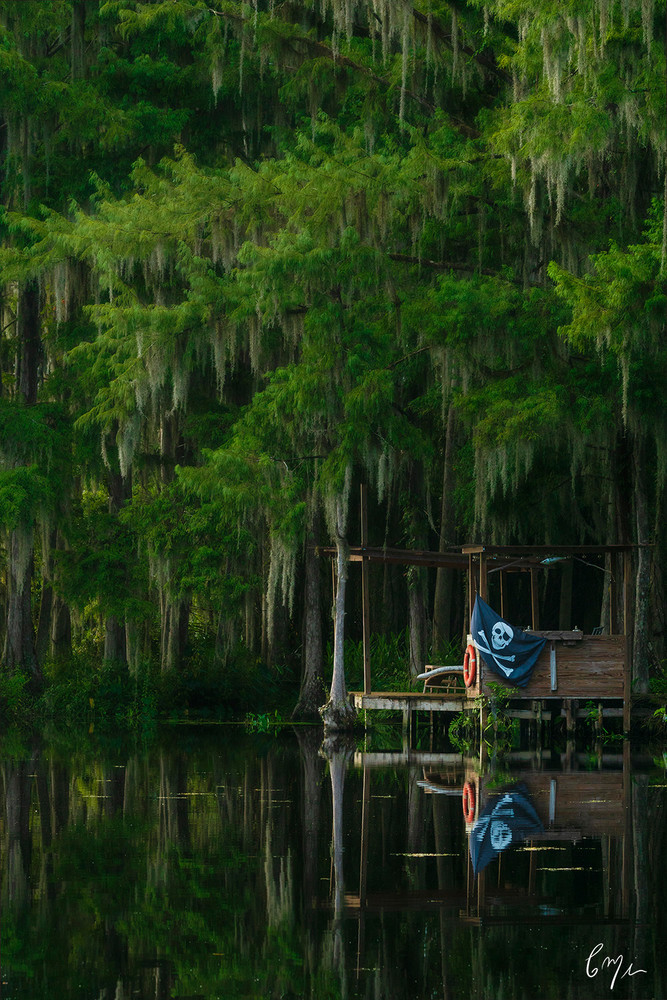 Constance Mier fine art nature photography - images of beautiful old Florida