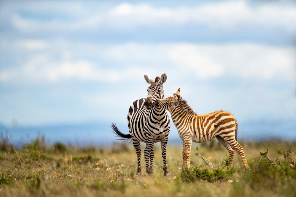 A Kiss For Mom Photography Art | danieldauria