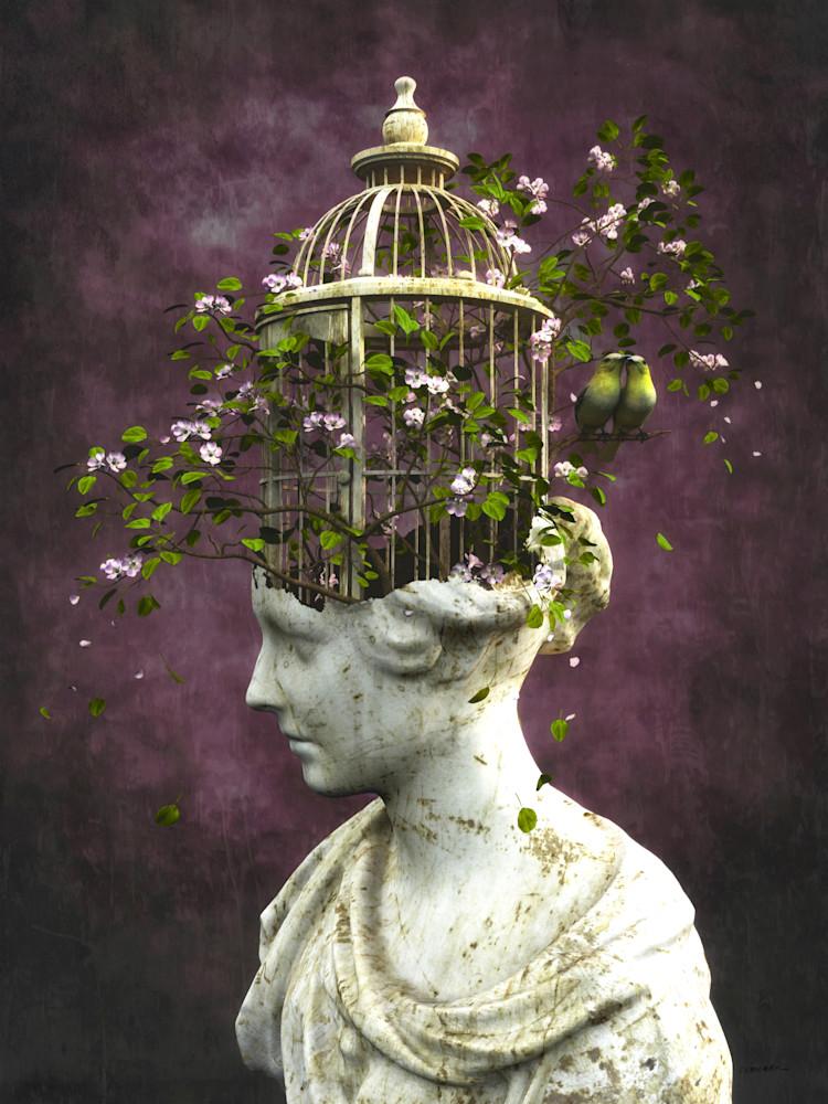 Compassion | Cynthia Decker, Curious3D