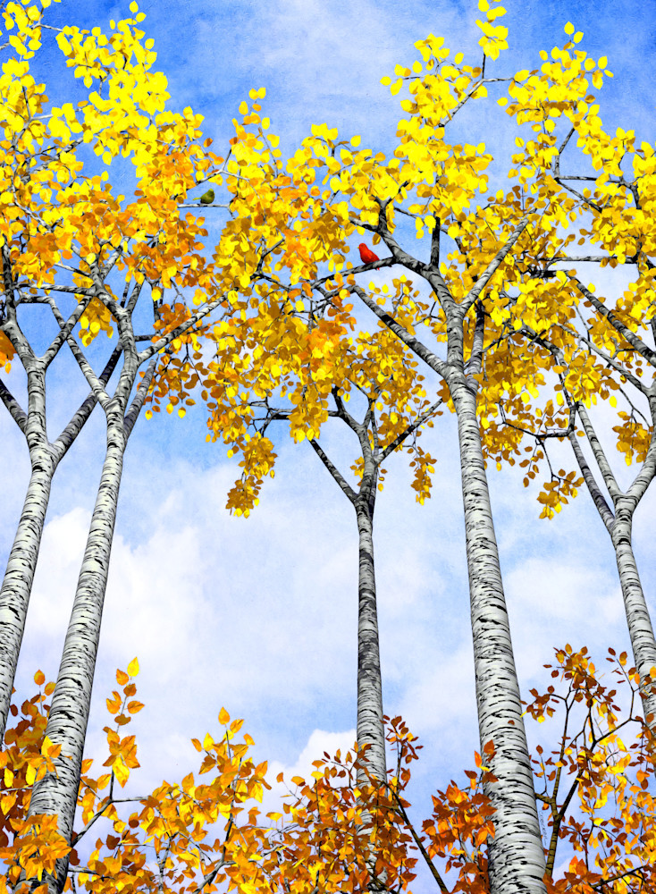 Birch Grove | Cynthia Decker
