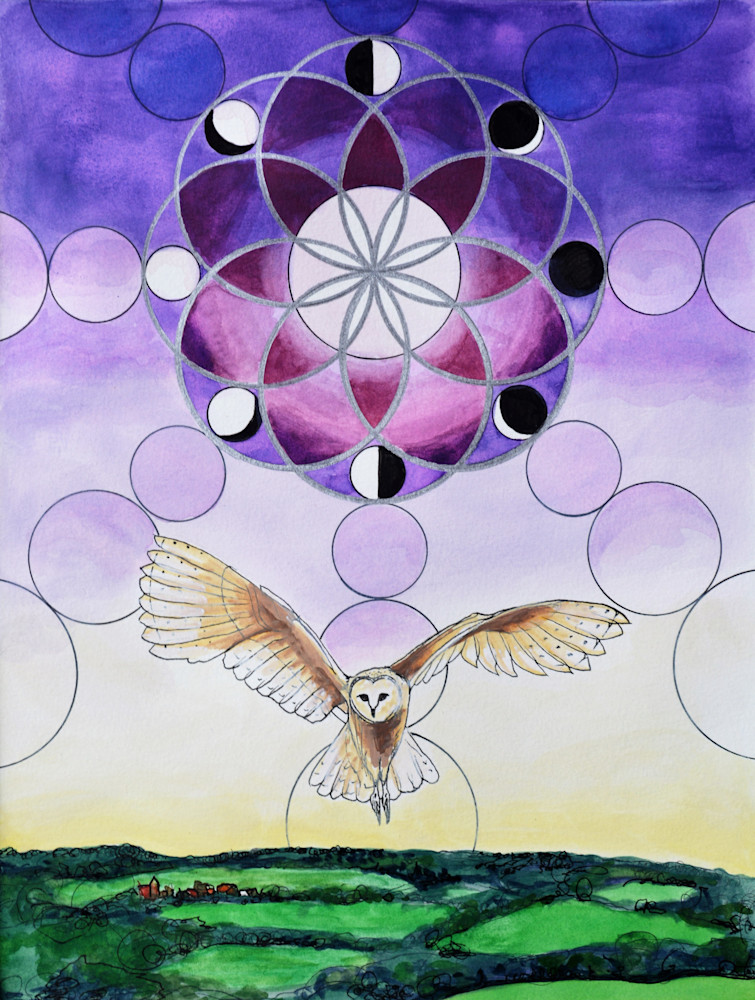 Barn Owl Flying Silently Over The English Countryside Art | Gnarwhal Designs