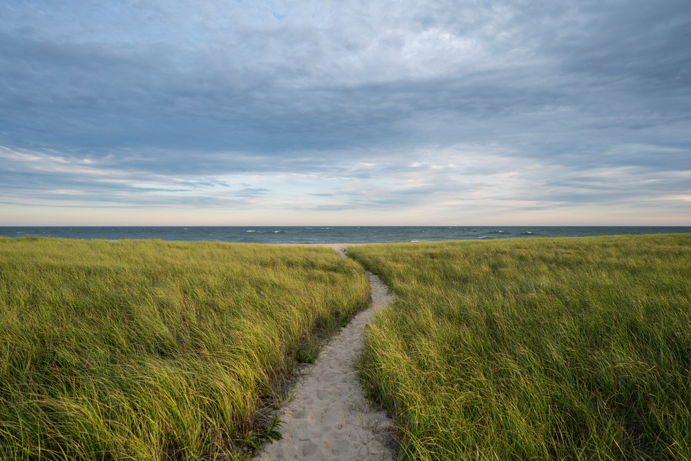 Surfside Beach Path Photography Art | Kit Noble Photography