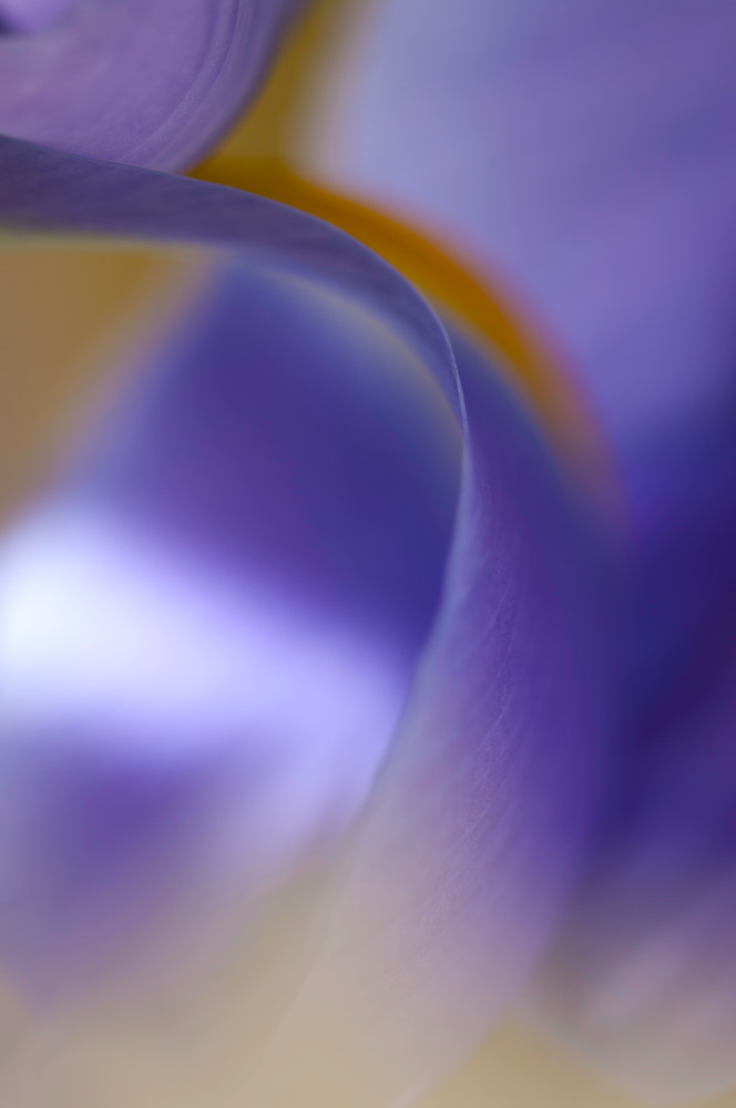 Purple Falls Photography Art | Kathleen Messmer Photography
