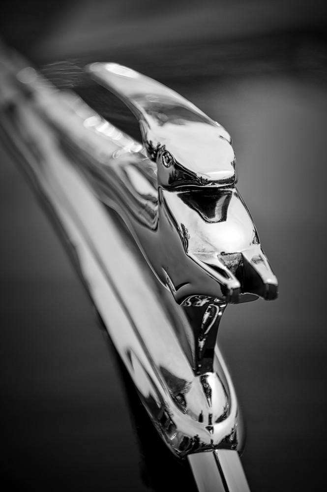 Chevelle Hood Ornament Photography Art | Kathleen Messmer Photography