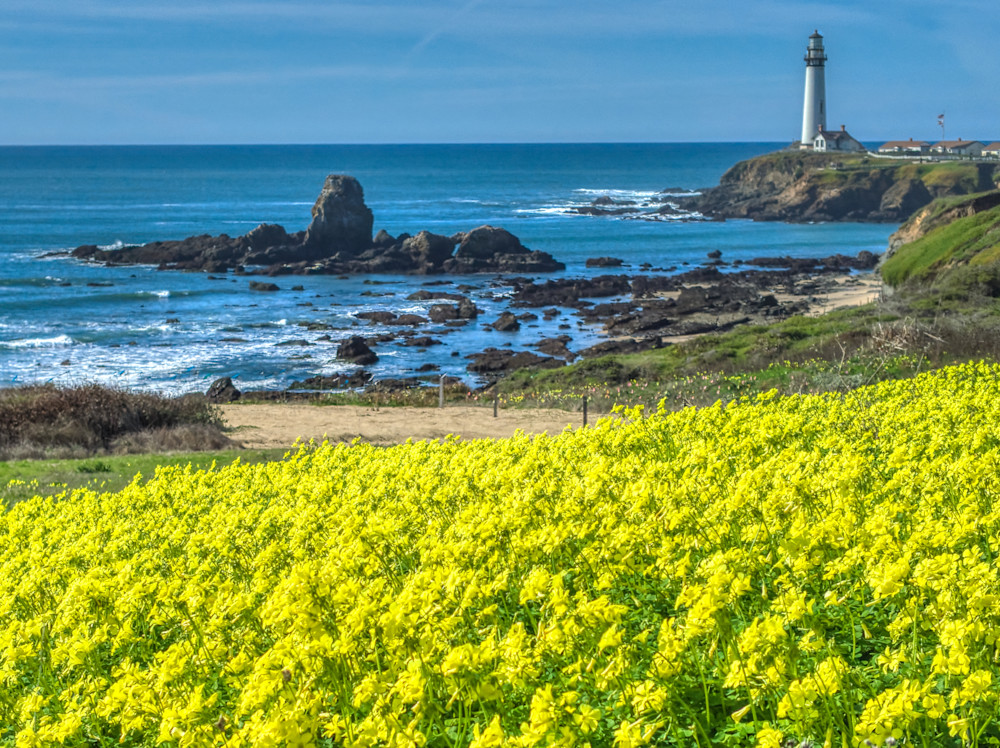 Pigeon Point Lighthouse Photography Art | FocusPro Services, Inc.