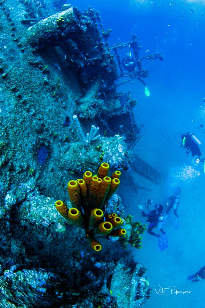 Shipwreck Aruba Photography Art   vitopalmisano