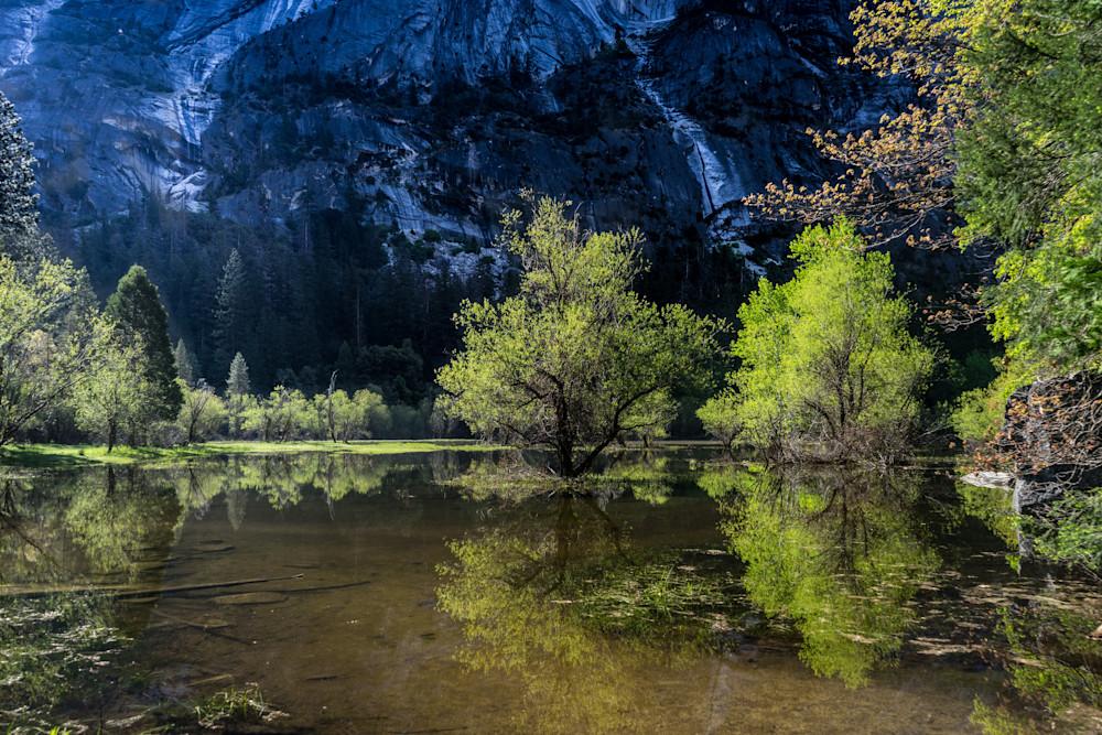 Mirror Lake - Spring Yosemite National Park photograph print