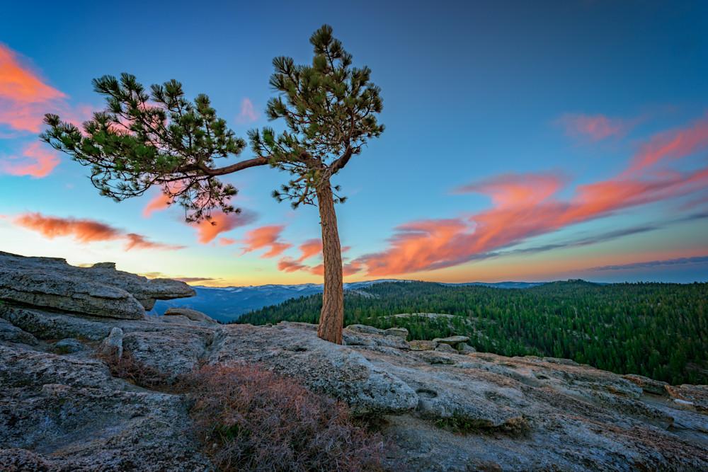 Sentinel Dawn | Shop Photography by Rick Berk