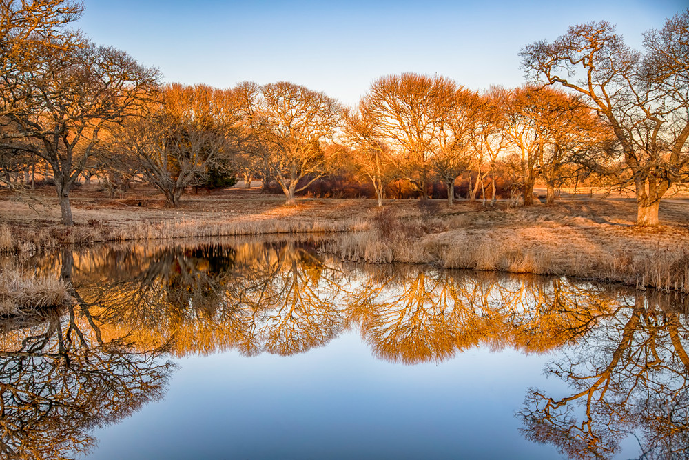 Turtle Brook Winter Reflections Art | Michael Blanchard Inspirational Photography - Crossroads Gallery