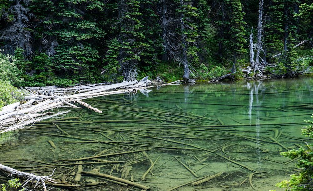 Moose Lake - Olympic National Park Washington landscape photograph print