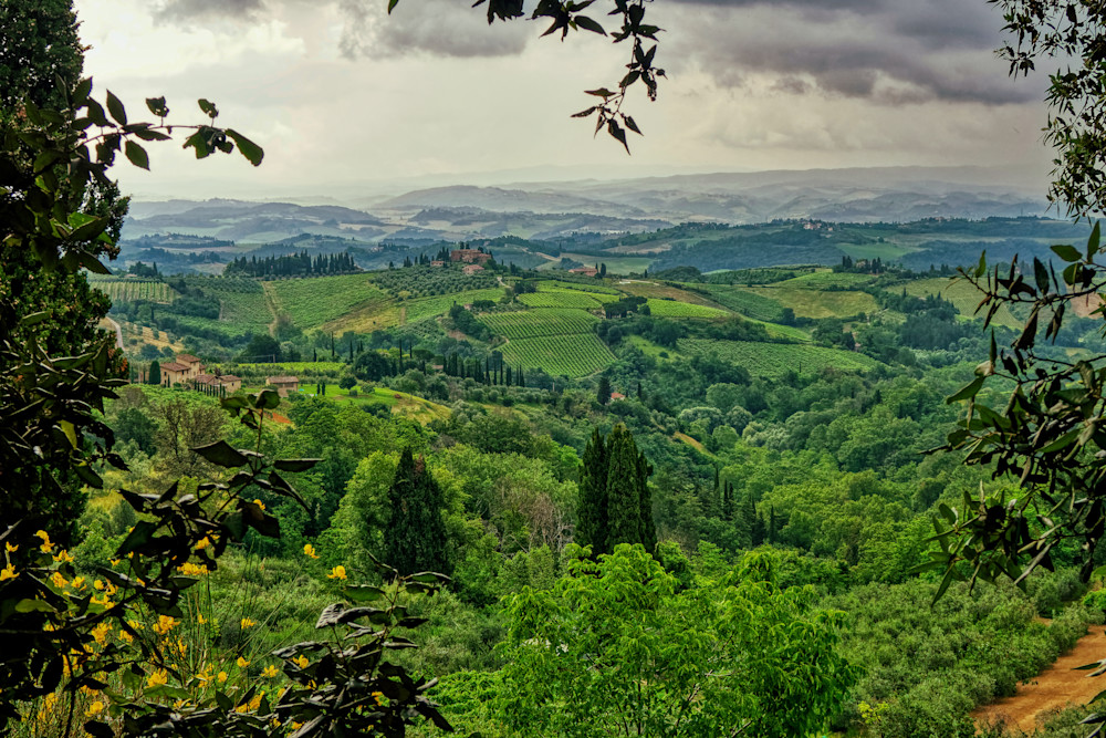 Tuscany Rain Photography Art | FocusPro Services, Inc.
