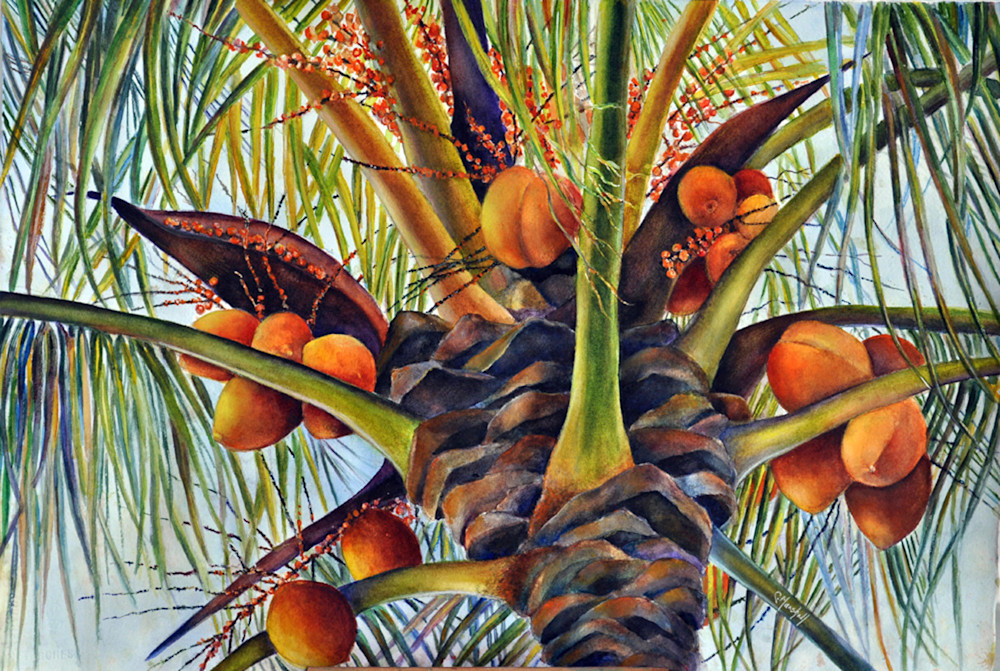 Coconut Tree, From an Original Watercolor Painting