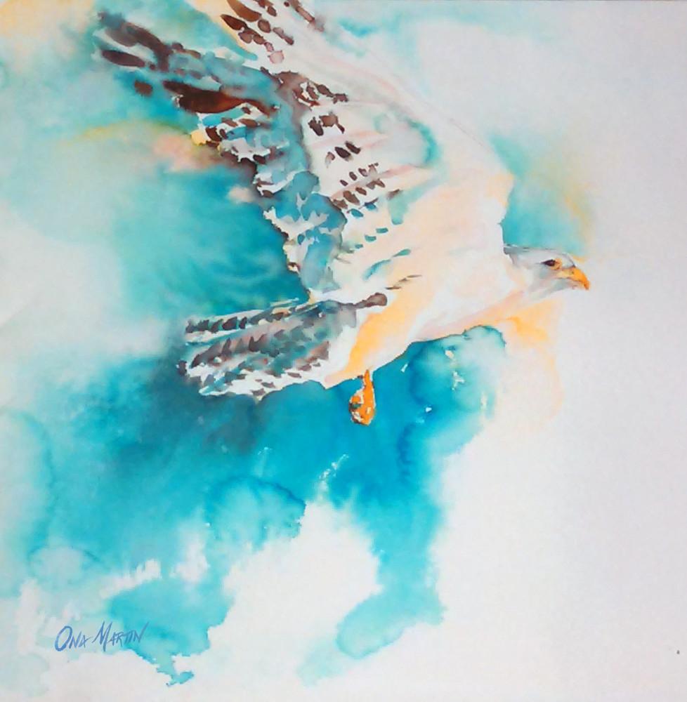 Hawk In Flight  Art   Bright Spirit Studio