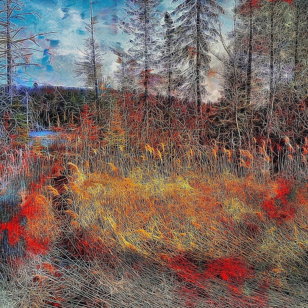 Spring In Haliburton Art | Maciek Peter Kozlowski Art