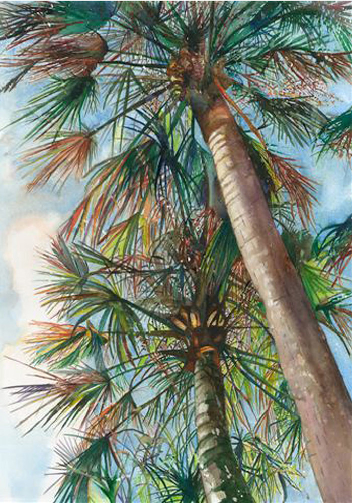 Umbrella Skies, From an Original Watercolor Painting