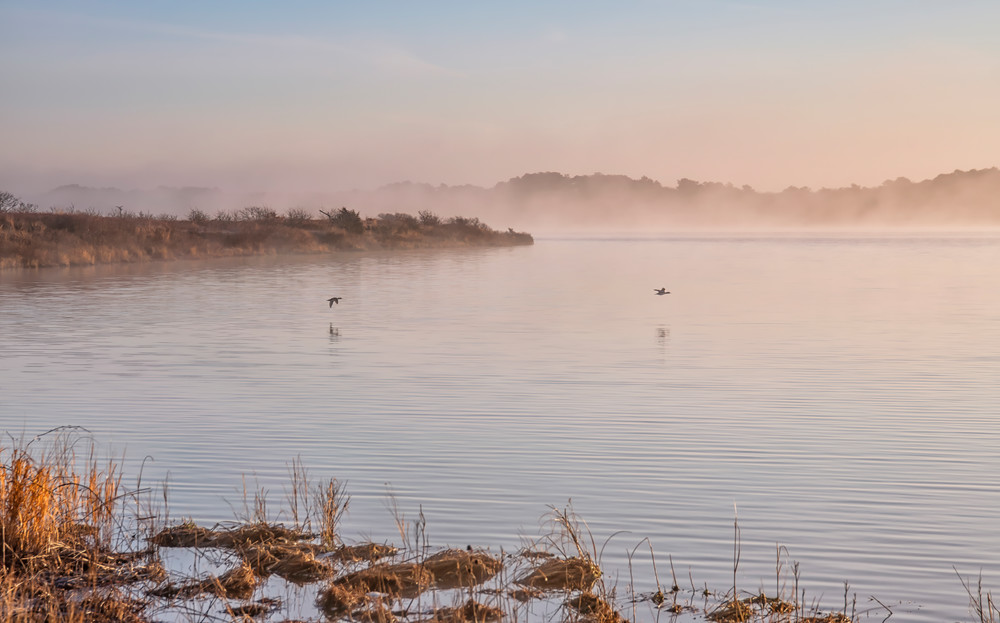 Long Point Birds In Flight Art   Michael Blanchard Inspirational Photography - Crossroads Gallery