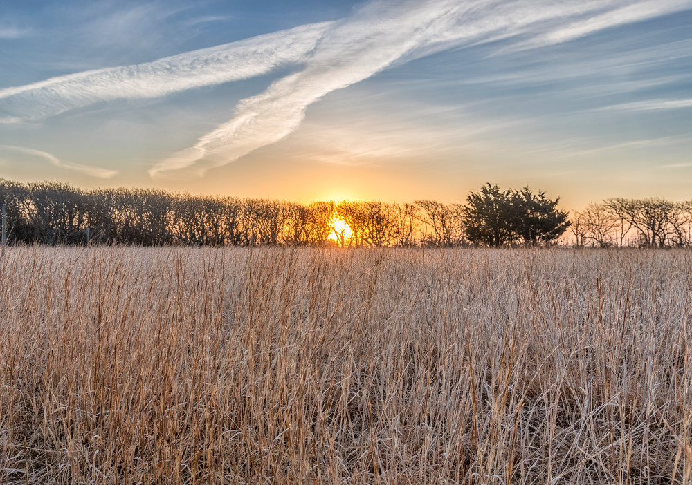 Long Point Grasses At Sunrise Art   Michael Blanchard Inspirational Photography - Crossroads Gallery