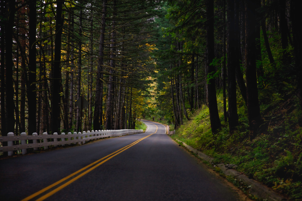 A drive on Historic Columbia River Highway through George W. Joseph State Natural Area Oregon,