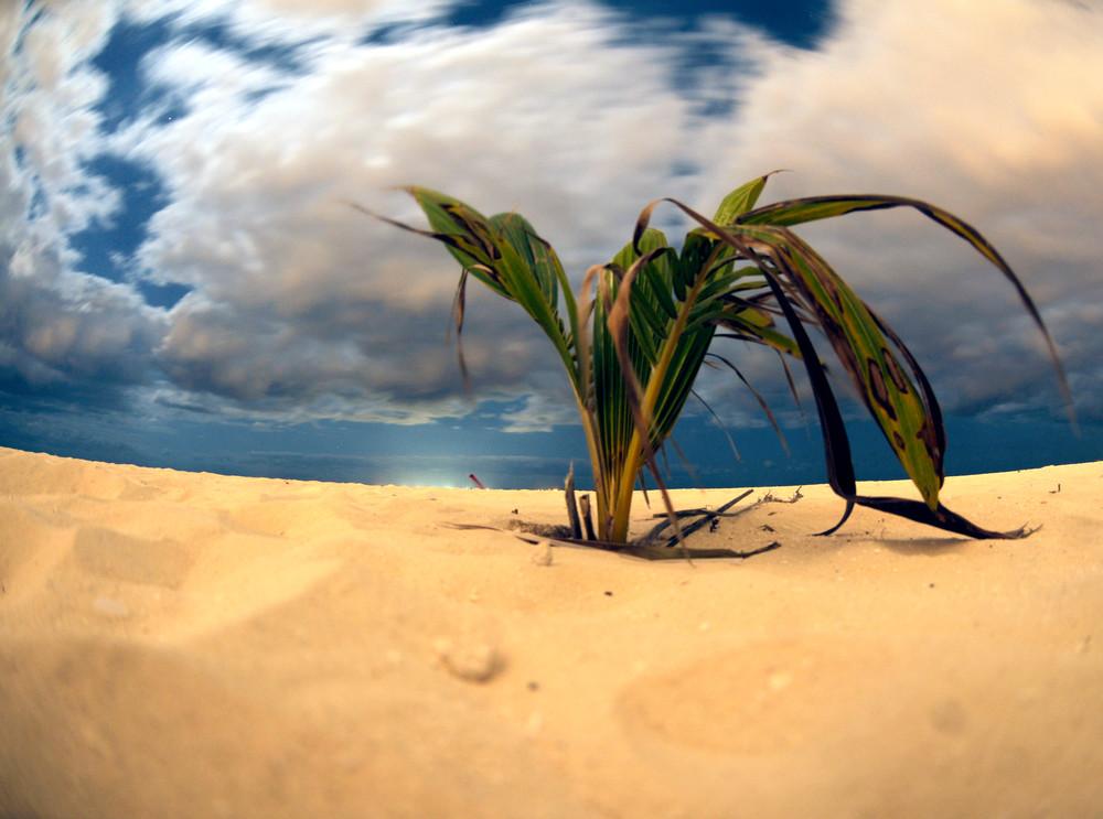 Scenic 41 Photography Art | mikelindwasserphotography