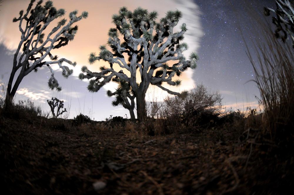 Scenic 73 Photography Art | mikelindwasserphotography