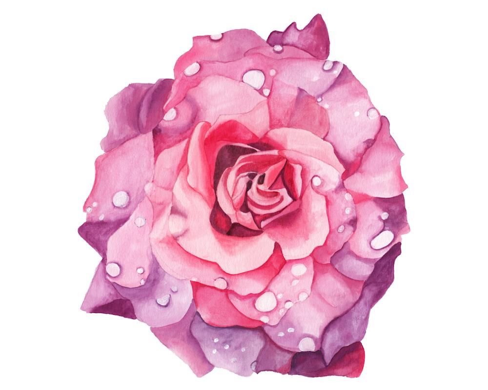 Sensual Birth | Watercolor