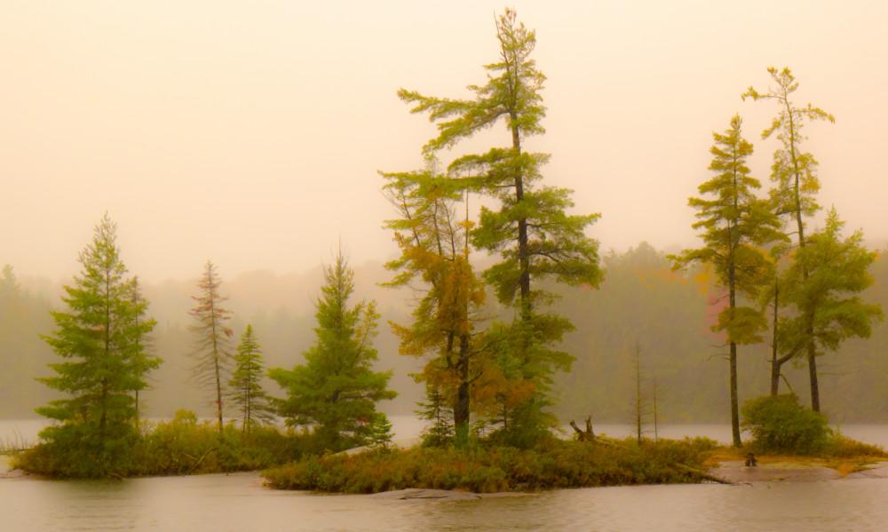 Rainy Day Algonquin Photography Art | Robert Leaper Photography