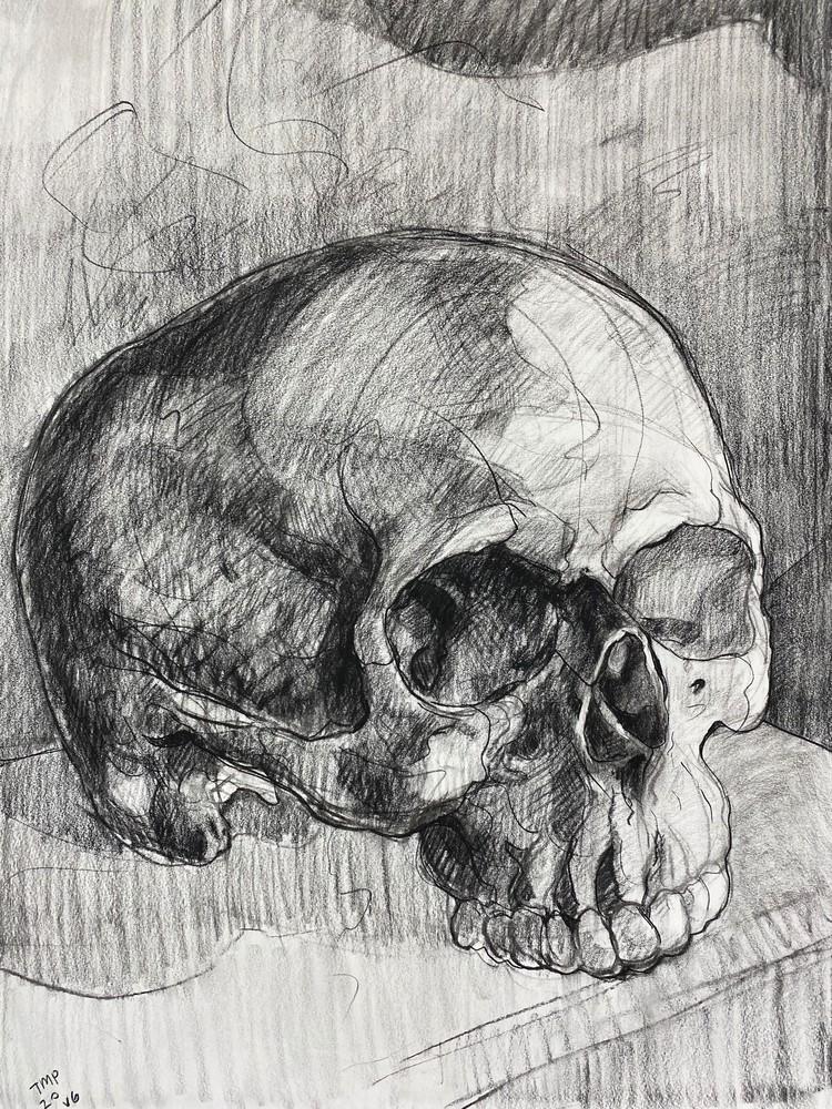 Skull V.6 Art | Matt Pierson Artworks