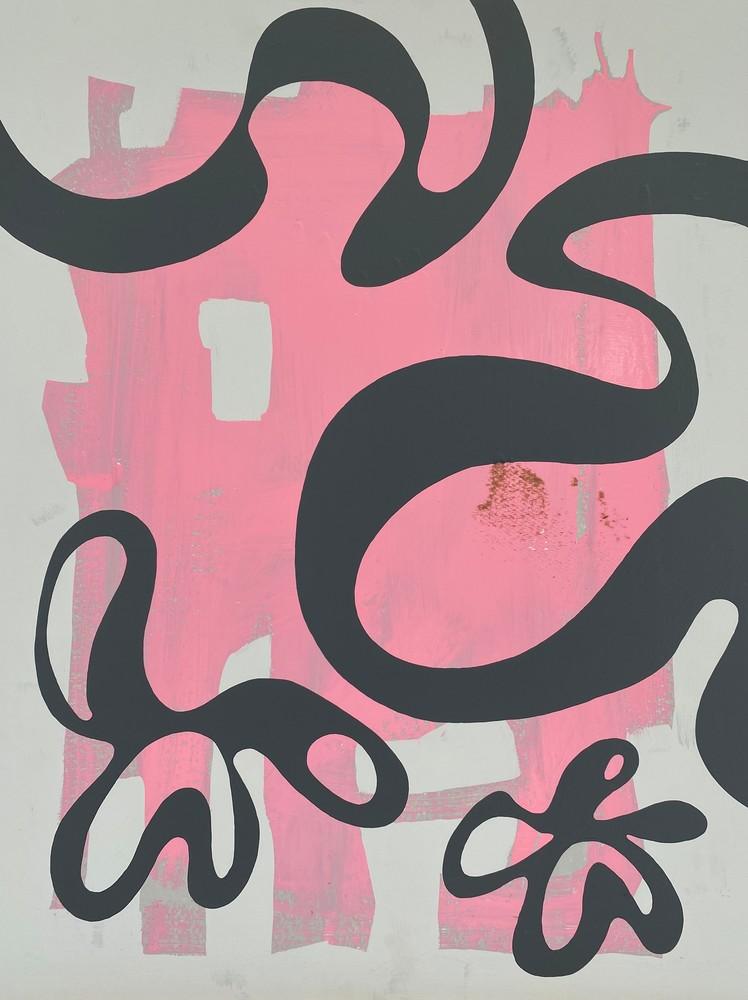Art Print   Amoeba Fractal 5 Art   Matt Pierson Artworks