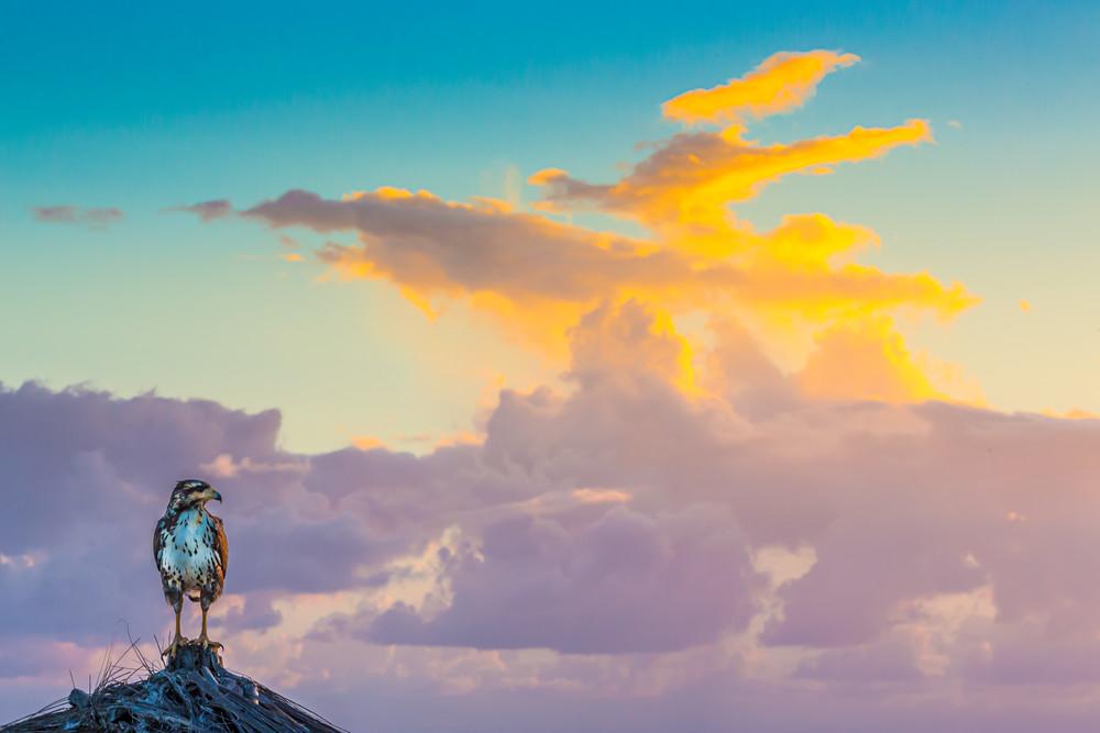 Sunset Vigil Photography Art | Robert Leaper Photography