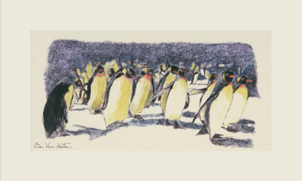 Rockhoppers Penguin Monotype